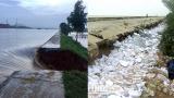 Đê biển Thịnh Long và hệ thống đê điều của tỉnh có nhiều hạn chế đáng lo ngại