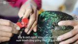 Giao Thủy: Nuôi chim trĩ 'đeo kính' thu lãi 300 triệu mỗi năm