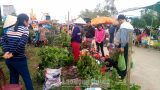 Nam Định: Nhộn nhịp Hội chợ Xuân Liễu Đề
