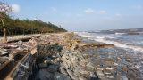 Nghĩa Hưng (Nam Định): Sập, vỡ nghiêm trọng bờ kè Khu Du lịch sinh thái Rạng Đông