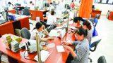 Agribank chi nhánh Nam Định: Cùng tổ vay vốn làm giàu