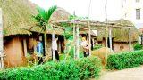 Giao Thủy: Bảo tàng Đồng quê-lưu giữ hồn quê Bắc Bộ