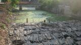 Dòng kênh bị ô nhiễm