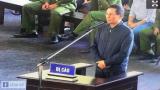 Tình hình ông Phan Văn Vĩnh và vườn cây khủng
