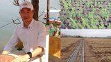Nam Định: Kỹ sư xây dựng bỏ việc lương 2.000 đô để làm nông dân