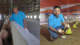 Làm giàu ở nông thôn: Kiếm tiền tỷ nhờ nuôi 2 con trên bờ 1 con dưới nước