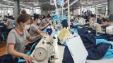 Nam Định: Huyện Xuân Trường chốɴɢ dịch hiệu quả để phát triển kinh tế