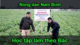 Nông dân Nam Định học tập và làm theo Bác