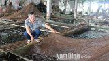"""""""Vua cá bống bớp"""" Nghĩa Hưng Nam Định"""