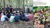 21 thanh niên vào rừng nhậu rồi khoe trên Facebook, bị phạt 210 triệu đồng