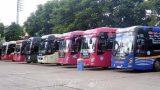 Nam Định: Tạm dừng hoạt động vận tải hành khách liên tỉnh đến một số tỉnh, thành phố để phòɴɢ dịch COVID-19