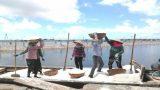Nam Định: Diêm dân ở xã Bạch Long (Giao Thủy) đã quá chán nản với nghề muối