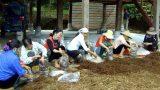 Nam Định: 10 năm đào tạo nghề cho trên 23 ngàn lao động nông thôn