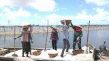 Nam Định : Diêm dân đã quá chán nản với nghề muối